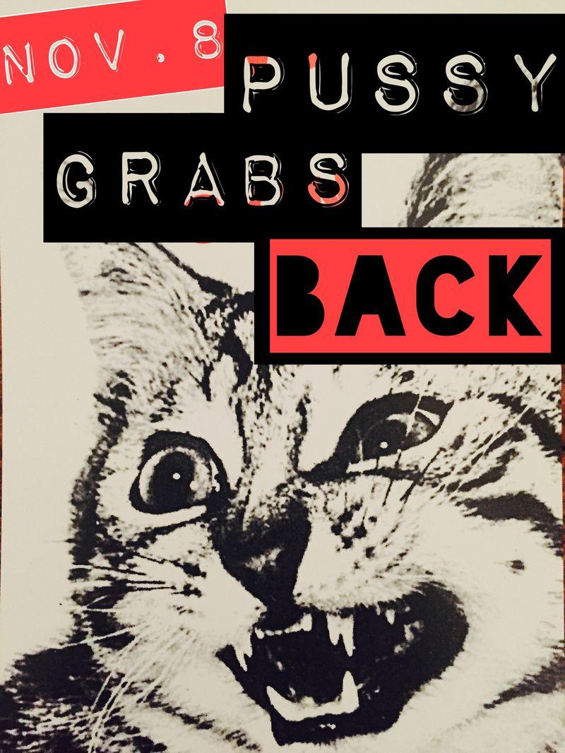 pussygrabsback (1).jpg